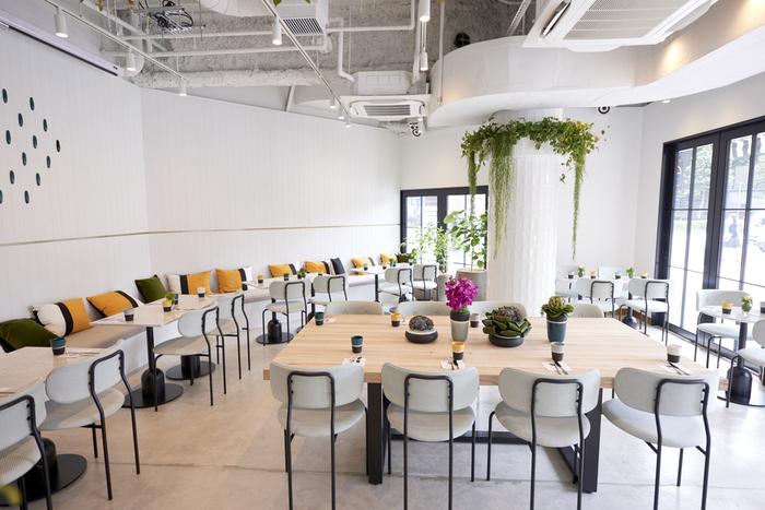 ここELLE cafe Aoyamaでもヴィーガンフードを頂くことができます。また、ELLE cafe Aoyamaではオーガニックにもこだわっているため、身体に優しい野菜が頂けます*