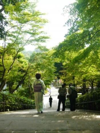 せっかく鎌倉散策するのであればレンタル着物で巡ってみるのはいかがでしょうか?鶴岡八幡宮の参道である段葛、圧倒的存在感の建長寺、長谷寺のほほえみ地蔵…着物を着て歩くことで背筋がしゃんとして、写真撮影も楽しくなります。