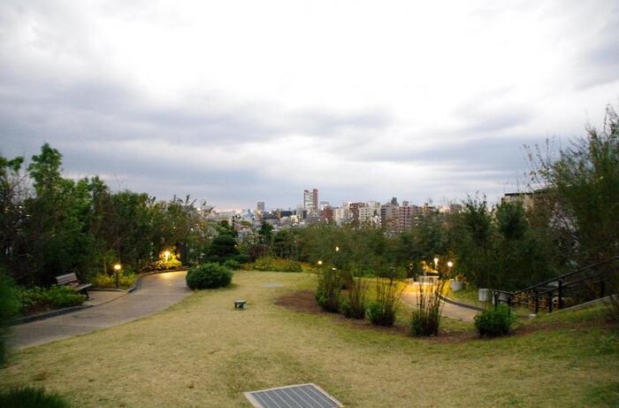 園内はゆるやかな傾斜になっていて、地上からの高さは約11~35メートル。芝生が多く緑豊かな印象ですね。小さなお子さんものびのびと遊べますよ。