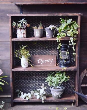 ベランダをすっきりおしゃれに見せてくれる、ガーデン用収納棚。多肉植物もたくさん飾ることができます。