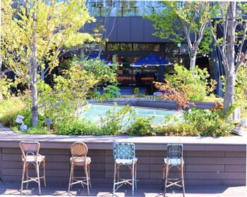 緑を囲むように椅子が並べてあり、四季の移ろいを感じられるのも魅力。早めの時間から開放されているので、お仕事前に立ち寄って清々しい空気を味わうのもおすすめ。