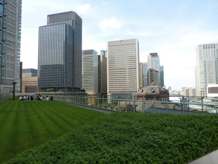東京駅そばの「KITTE」の6階にある屋上庭園「KITTEガーデン」は、約1,500平方メートルという広大なスペースが魅力。樹木のほかに青々とした芝生が広がっていて開放感抜群です。