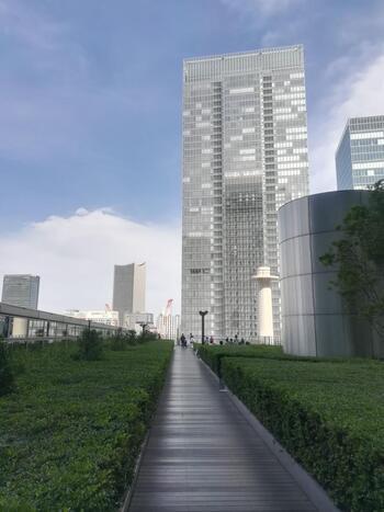 ウッドデッキの両脇も緑で囲まれていて、周囲の高層ビルとのコントラストは都会ならでは。
