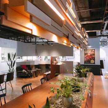 Johnson's Tea Lounge(ジョンソンズティーラウンジ)は、「日本茶をもっと身近に」をコンセプトにした、日本茶カフェ。