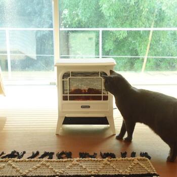 寒い季節、お部屋を暖かく快適にするために欠かせない「暖房器具」。機能性はもちろん、デザインにもこだわって選びたい、効率的に賢く使いたい、気になるポイントがたくさんあります。そこで今回は、デザイン性と機能性、両方叶えるおしゃれな暖房器具を、設置場所別にご紹介していきます。