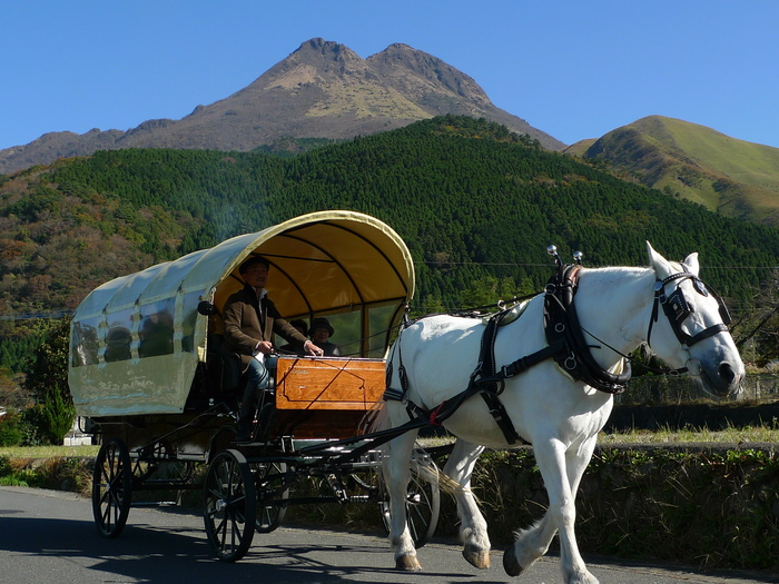 まず湯布院に着いたら、その土地の穏やかな空気・まわりの風景をめいっぱい満喫して、気持ちよくリフレッシュしてみては。  そこでおすすめなのが、「由布院の観光辻馬車」。湯布院の田園風景の中を周遊する馬車で、この町の全景を捉えてみてくださいね。