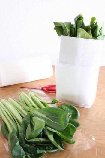 スーパーで買ってきた野菜はできるだけ新鮮な状態で、長く保存できたら嬉しいですよね。冷蔵庫に保存する際にちょっとしたコツをおさえるだけで、野菜を長持ちさせることができますよ。