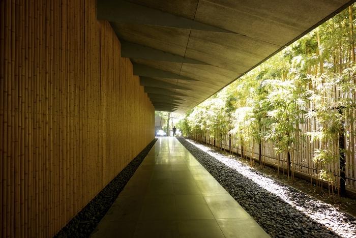 日本・東洋の古美術品が展示された「根津美術館」は、国内外で有名な日本を代表する建築家、隈研吾氏によるもの。生垣と竹竿の塀との間の風情漂う館内へと続くアプローチが、都会から静かな内想空間へと誘います。