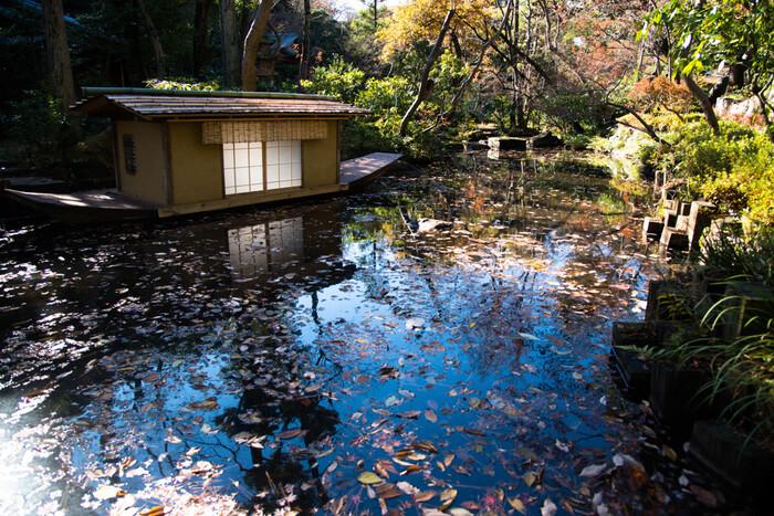 純和風の庭園は、四季折々の自然を感じられます。美術館を見学したあとは庭園散歩でのんびり過ごしてみてはいかがでしょう。