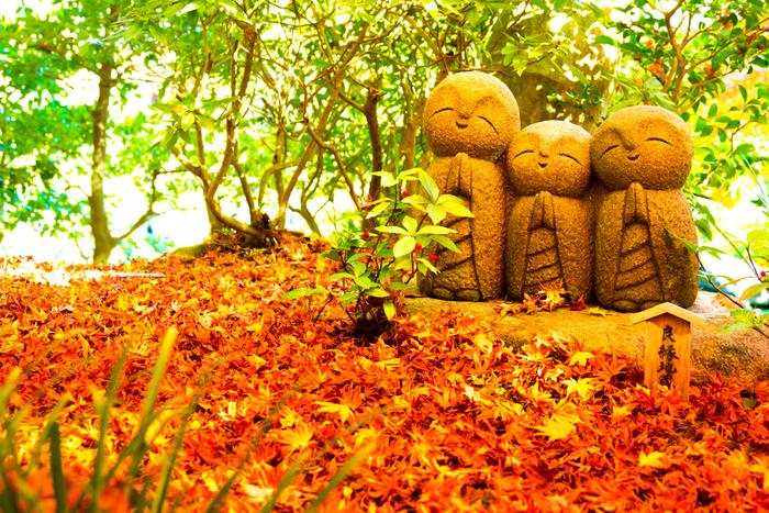 紅葉に囲まれた微笑み地蔵は見ているだけでこちらも思わずニッコリ。長谷界隈はご飯屋さんもたくさんあるので鎌倉駅から江ノ電に乗ったり、または由比ヶ浜通りを散策しながら、のんびり楽しめるエリアになっています。