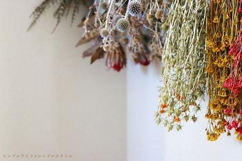 手作りだから愛おしい*吊るすだけ簡単「ドライフラワー」の作り方&飾り方アレンジ