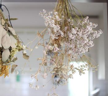 お花を吊るして1~2週間待つと…ドライフラワーの完成!たったこれだけの工程で簡単に作れちゃいます。