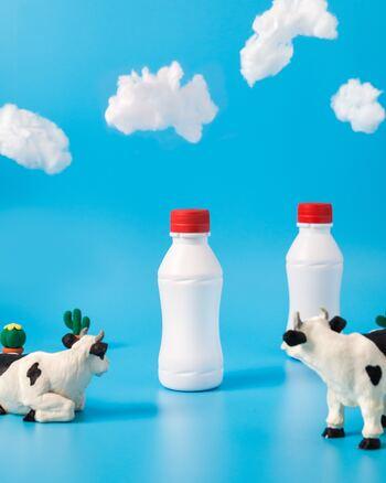 一般的にヨーグルトは、「牛乳+2種の乳酸菌(サーモフィラス菌とブルガリア菌)」を入れて発酵するのが基本。  そしてなんと、各社ごとに「他の乳酸菌」や「ビフィズス菌」を添加しているので、メーカーによって期待できる効果にそれぞれ個性があるのです!