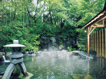 本館は滝の音が響く本格庭園露天風呂で、趣漂う竹庭が広がります。別館は雄大な海を臨める露天風呂で、白波と松の木が芸術的な美しさを醸し出す五浦海岸の景色を満喫できます。 五浦温泉は、〈ナトリウム・カルシウム-塩化物強塩泉〉で、空気に触れてうぐいす色に濁っていく珍しい濁り湯。源泉掛け流しの成分の濃いお湯が、身体の奥まで染み渡ります。