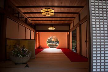 地元民がご案内する《鎌倉の歩きかた》11月篇~紅葉とお茶屋さん~