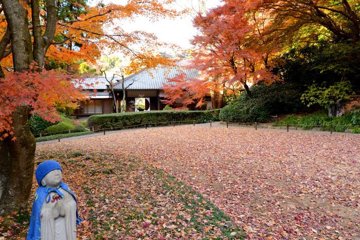 紅葉が最も美しくなる12月初めには本堂後庭園も公開されます。丸窓から覗く、まるで美術館で絵を見ているような錯覚に陥る明月院。わざわざ足を運ぶ価値がある、紅葉見所スポットです。