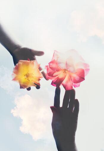 自分に対しても、相手に対しても、「べき」を求めすぎてしまう。そんな方は、最初は嘘でもいいので「そのままでいいよ」とつぶやいてみてください。失敗したり、うまくいかなかったり、完璧にできなかったりしても、「そのままでいいよ」と声に出すのです。人それぞれ、得意なことや不得意なことがあり、考え方や行動も違う、それがわたしたち人間なのだと気づくきっかけになります。