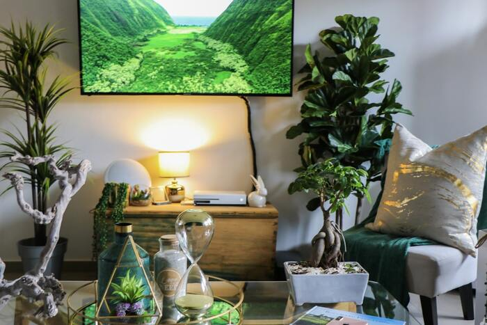 植物を中心とした温かみ溢れるレイアウト。可愛らしい動物のオブジェにもほっこりしますね。ソファ前のローテーブルのスぺースも有効に使ってどこを見てもおしゃれな空間に。 テレビは壁掛けにすることで、植物や雑貨をたっぷり飾っても窮屈感なくバランス良く仕上がります。