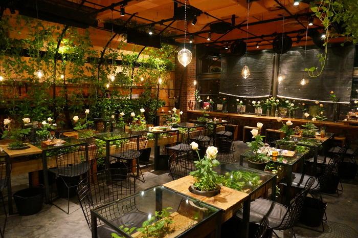 このAoyama Flower Market TEA HOUSEは、店頭のフラワーショップの奥に広がる秘密の花園のような癒しの空間が広がるカフェで、フラワーショップならではの青々とした植物に囲まれたカフェです。ナチュラルテイストなインテリアと緑の植物のコントラストがたまらない空間が魅力ですね♪