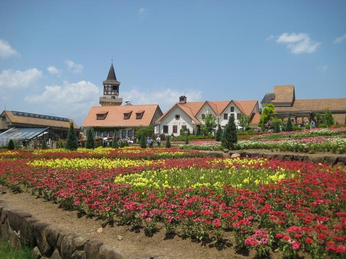 山梨県立フラワーセンター・ハイジの村は、2006年に山梨県北杜市にオープンした、「アルプスの少女ハイジ」の世界観を表現するテーマパークです。バラをはじめ一年中咲き誇るお花に囲まれた、大変メルヘンなおすすめスポットです。