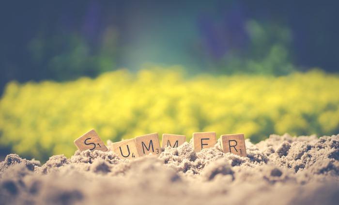 夏の訪れを感じることができる代表的な食材は、ピーマン、ゴーヤ、ナス、トマト、おくら、パプリカ…など。  夏は暑さ対策と同時に食中毒にも気をつけなければいけません。お弁当おかずは、「しっかり火を入れたものをちゃんと冷ましてからお弁当に盛り付けする。」「お酢を上手に使う。」などの工夫をする必要があります。保冷剤も上手に活用してみましょう。