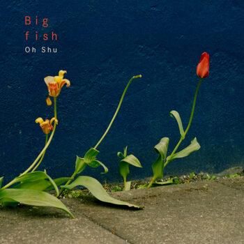 2019年5月には3rdアルバム『Big fish』をリリース。英詞と日本語詞を流れるように織り交ぜた歌詞、アナログとデジタルを美しく融合させたサウンドが、彼の真骨頂ともいえる新たなポップスを作り上げました。