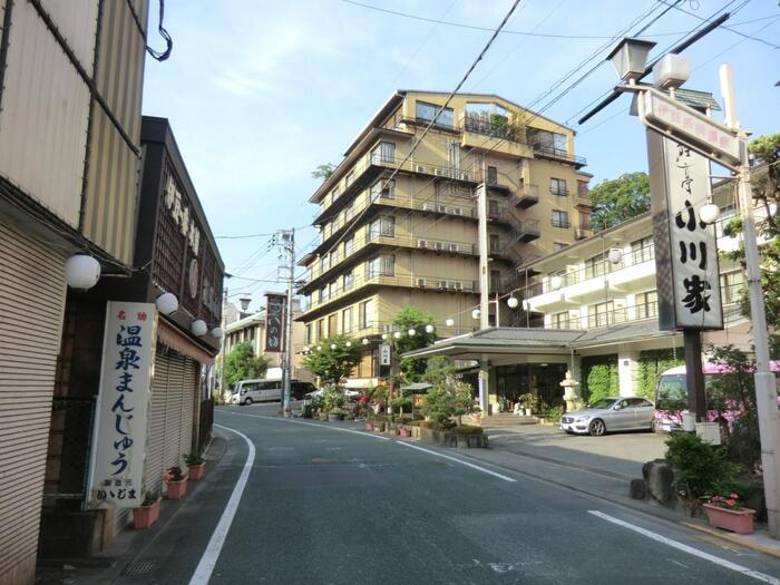東部の古奈(こな)と西部の長岡からなる、伊豆長岡(いずながおか)温泉。伊豆の玄関口に広がる歴史ある温泉地です。日本で初めてペットボトルに温泉を詰めたことでも知られており、無味無臭の「飲める温泉」が楽しめます。美肌になれる「美人の湯」や「温泉まんじゅう」も有名です。