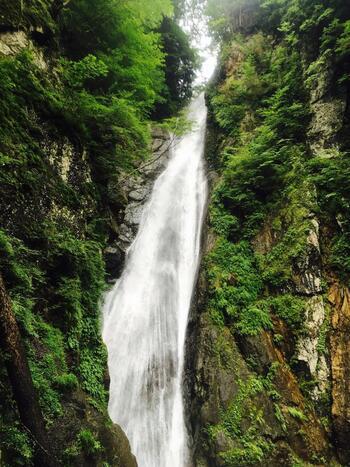 周りは山に囲まれているので、大きな観光施設やお店などはなく、「山歩き」が温泉以外の唯一のレジャー。中でも日本の滝百選に選ばれた「安倍の大滝」は必見です!近くのバス停から歩いて約45分。山道や吊り橋を渡った先にあります。自然の中を歩くだけでも、心が洗われますよ。たくさん歩いた後の温泉も格別です。