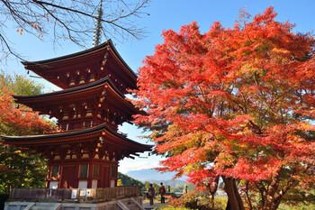 こちらの三重宝塔は、昭和61年に再建されたものです。普段は見ることのできない内部に美しく装飾された扉絵・壁画は、毎年10月第3日曜日の開山忌に、年に一度だけ公開されます。紅葉の時期の三重宝塔は、さらに色が映えて美しく見えます。