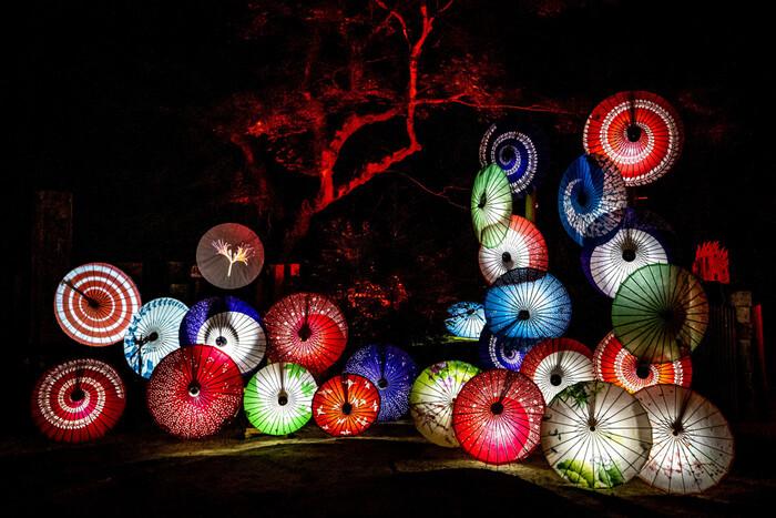 秋に行われる「飛鳥 光の回廊」期間中には、和傘を使った幻想的な雰囲気も見どころです。