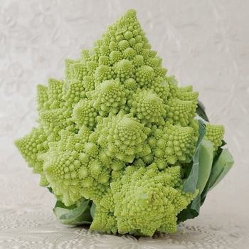 ロマネスコは、アブラナ科アブラナ属の野菜。16世紀ごろからドイツやイタリアで作られるようになったといわれ、その起源については、「ブロッコリーとカリフラワーを掛け合わせてできた変種」や「ロマネスコから、ブロッコリーとカリフラワーができた」など諸説あり、いまだはっきりしていないようです。