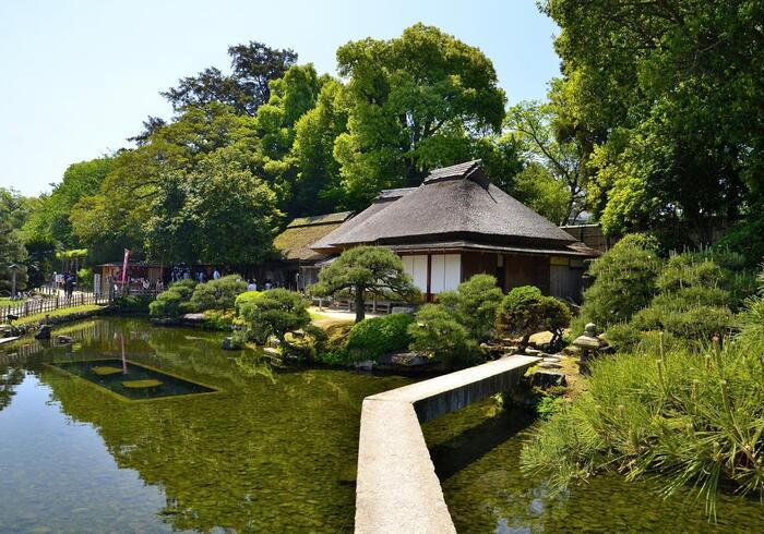後楽園の中でも数少ない、 戦災をまぬがれた建物の一つであり、往事の姿が残る「廉池軒(れんちけん)」。池に架かる石橋や松林、曲水と池の段差など、起伏に富んだ見事な景観を眺めることができます。