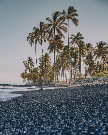 鳥の声、波の音。まるでリゾート地に来たかのような大自然を感じるハワイミュージック。疲れ切った心を回復してくれます。
