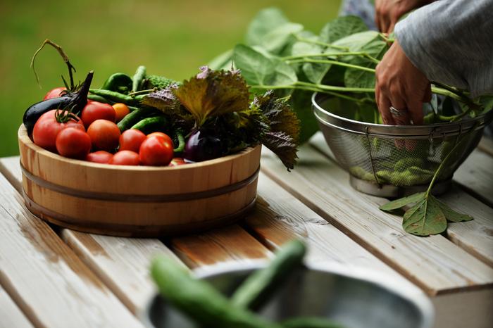 余った野菜で作ろう!「ぱっと作れるおかず」で食卓にプラス1品