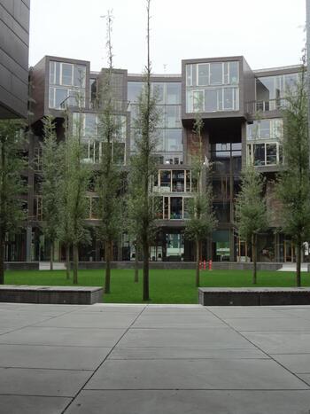 建物の外側から見えるボックスが各部屋になっており、閑静な場所に静かに佇んでいます。心落ち着く素敵な空間ですね。