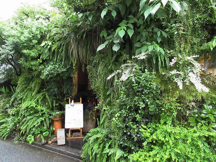 つづいてご紹介するボタニカルカフェ「flower&cafe 風花」は、世界的にも有名な庭園デザイナー【石原和幸氏】が手がける緑で囲まれた森の中のカフェのような人気のボタニカルカフェです。