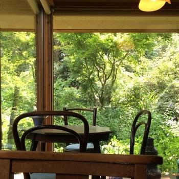 大きなガラスからは庭の草木が見えます。天候や時間帯によって表情を変える自然の姿に癒されますよ。
