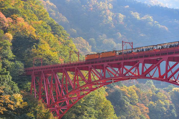 そんな黒部峡谷の中を走る「黒部峡谷鉄道トロッコ電車」も見どころのひとつ。片道1時間20分、トロッコに揺られながら峡谷の絶景を堪能することができます。途中には、湖に浮かぶお城のような新柳河原発電所や、猿専用に作られた吊り橋など、見どころがたくさん。展望台や遊歩道も整備されており、撮り鉄さんにも人気です。