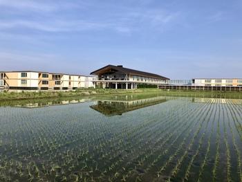 JR鶴岡駅から車で10分ほどの距離にある「庄内ホテルスイデンテラス(SHONAI HOTEL SUIDEN TERRASSE)」。  建築界のノーベル賞とも言われるプリツカー賞を受賞した建築家の坂茂さんが設計したホテルです。まるで水田に浮かぶような美しさを感じます。