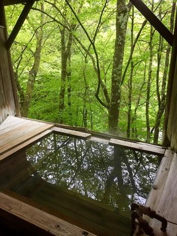 親湯温泉は、戦国武将、武田信玄の隠し湯として400年もの間、長く親しまれてきた温泉です。清々しい木々に囲まれ、目からも耳からも、五感をフルに活用して癒されます。心と体をリフレッシュするのにぴったりな場所ですね。