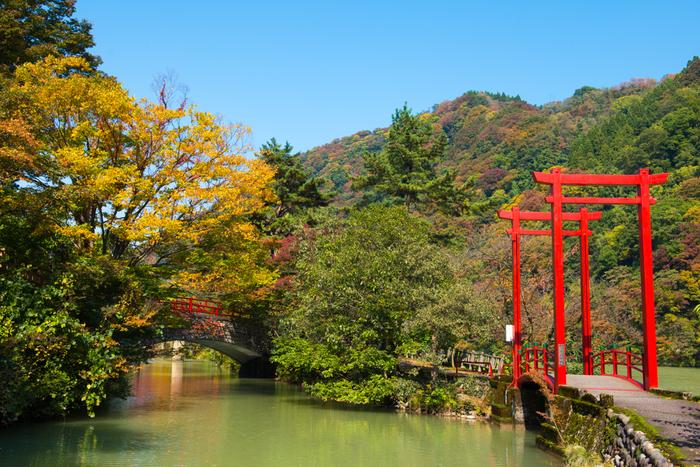 庄川温泉周辺の観光スポットと言えば「庄川水記念公園」です。展望台や物産館、食事処、美術館、資料館などいろいろな施設が集まっています。散策にぴったりの遊歩道や足湯、お子さんが遊べる広場もあり、楽しみ方いろいろ!縁結びや開運祈願で有名な「鯉恋の宮」にもぜひ足を運んでみてください。
