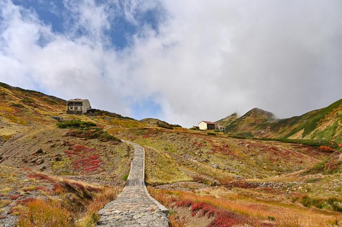 そんな黒部ダムをルートに含む「立山黒部アルペンルート」は北アルプスを巡る山岳観光ルート。富山県の立山から長野県の扇沢までを、バスや鉄道、ロープウェイ、徒歩などで巡ります。37.2kmの道のりの間には、見どころもたくさん。ファミリー、カップル、子連れ、シニア、一人旅、それぞれのスタイルに合わせて楽しみましょう。