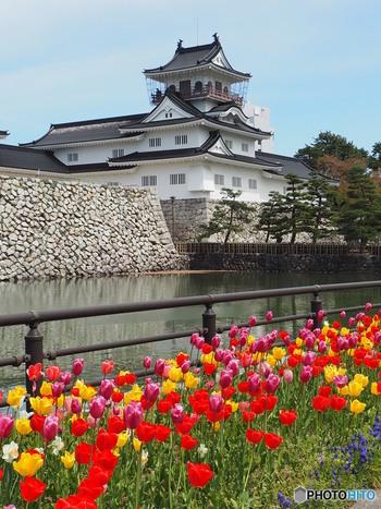 富山県の中心富山・滑川・立山エリアは、それぞれの場所で異なる魅力を味わうことができます。県の中心地・富山市にあるのは、富山のシンボル「富山城」。内部は「富山市郷土博物館」になっており、富山城の歴史や貴重な資料などを見学することができます。