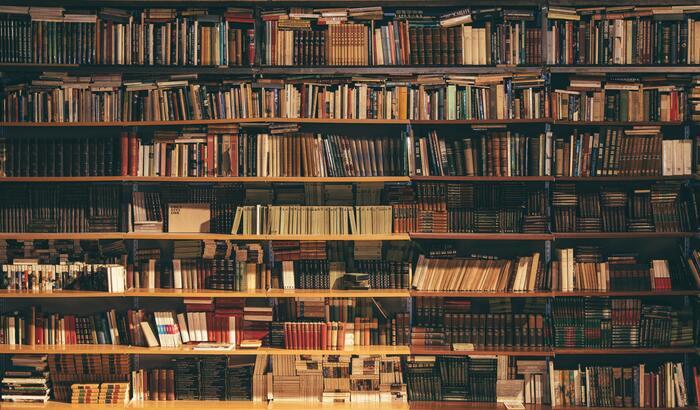 本を読んでいると、心がふんわりと満ちてくるのを感じます。でも、なんだかいつも同じようなジャンル、同じ作者の本ばかりを選んでしまうこと、よくありますよね。ちょっぴり視野を広げて、違ったジャンルにも関心を持ってみると、新しい世界の扉が開かれるかもしれません。