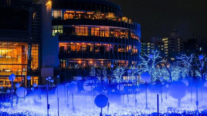 """毎年人気のイルミネーションスポットである東京ミッドタウンでは、今年は11月14日(木)~12月25日(水)に「MIDTOWN CHRISTMAS 2019(ミッドタウン クリスマス)」が開催されます。中でも人気のメインイベント「スターライトガーデン 2019」は11月26日(火)から12月25日(水)までの開催です。今年のテーマは""""宇宙現象""""。どんな景色が見れるのかは、行ってからのお楽しみ♪"""