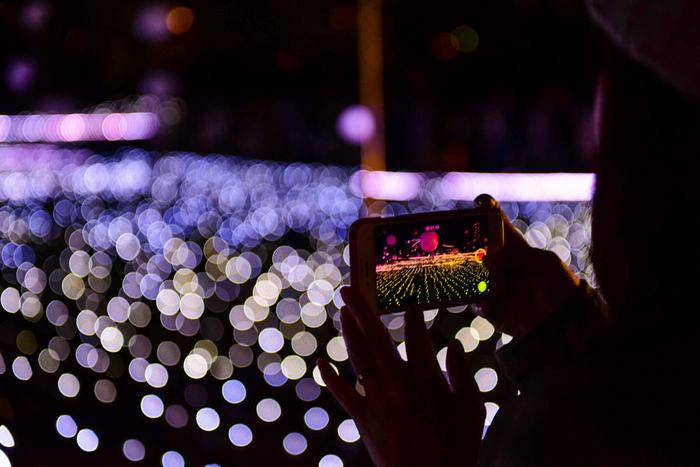 写真を撮りに出かけよう♪カメラ好きさん必見の2019年「クリスマススポット」