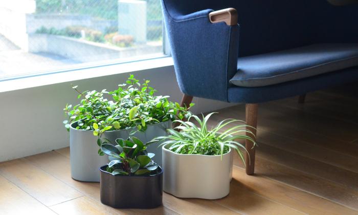 ニュアンスのあるカラーでセラミックらしいするりとした質感がとってもおしゃれ。植物を入れる他に、雑誌や小物を入れる器にしても。