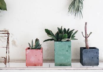 四角い形が可愛らしいコンクリート風のプランター。実はこちらも身近な材料で出来ています。色味は自由に変えられるので、お部屋の雰囲気に合わせて遊べる。