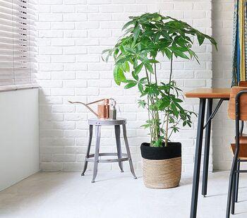 天然素材のジュートで出来た鉢カバーはナチュラルな質感が観葉植物と好相性。ざっくりとした佇まいでシンプルなお部屋にも似合います。