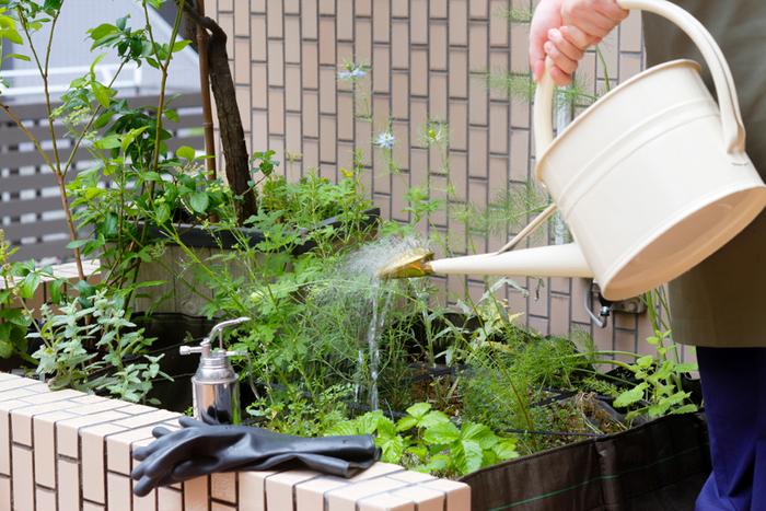 英国製のブリキのジョウロは、真鍮のシャワーヘッドから流れる細かな水のシャワーが特徴的。置いておくだけでもオシャレなお庭の演出になりそう。